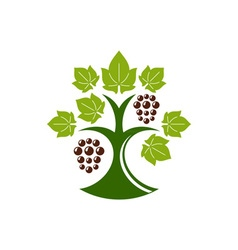 Grape-Tree-in-color-380x400 vector