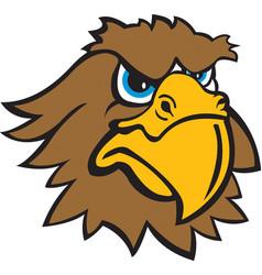 Hawk head logo mascot vector