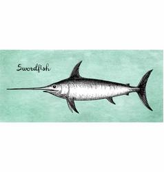 Ink sketch of swordfish vector