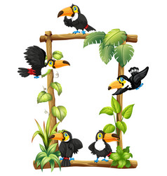 Toucan on wooden frame vector