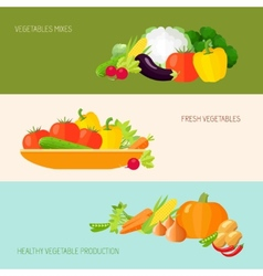 Vegetables Banner Set vector image