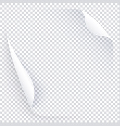 white transparent page with two curled round vector image