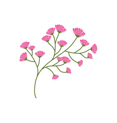 flourishes branch spring image vector image vector image