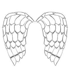 bird or angel wings vector image