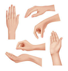 hands gestures female caring skin palm and vector image