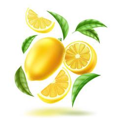 realistic lemon slice fruit leaves motion vector image