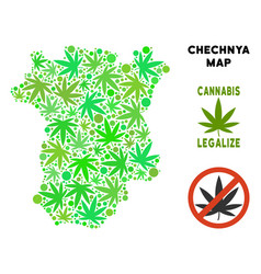 Royalty free cannabis leaves collage chechnya map vector