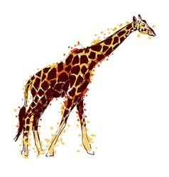 Colored hand drawing giraffe vector