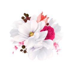 Elegance flowers bouquet of white beautiful vector
