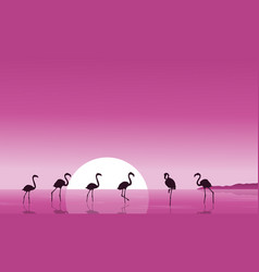Flamingo on the lake scenery silhouettes vector