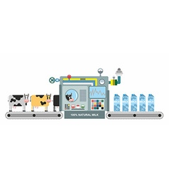 Infographics milk production Stages of milk vector image