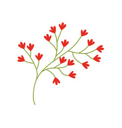 red flower ornate image vector image