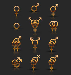 set of golden sexuality icons vector image