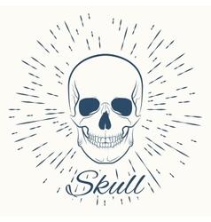 Skull and vintage sun burst frame vector