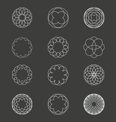 Spiral Patterns vector image