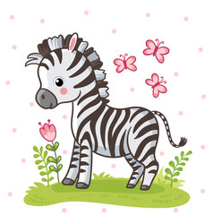 Zebra standing on a flower meadow cute african vector