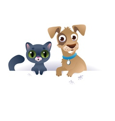 Dog and Cat above white banner vector image vector image