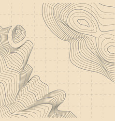 Abstract topographic contour map vector