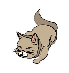 Cat animal pet adorable desing vector