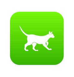 cat icon digital green vector image
