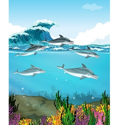 Dolphins swimming under the sea vector image