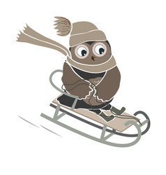 funny and cute sledging owl new year and vector image