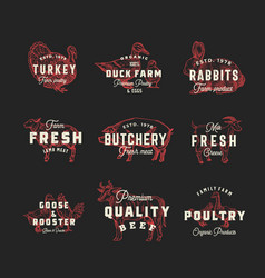 retro cattle and poultry logo templates set vector image