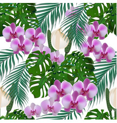 Jungle green tropical leaf flowers of orchids vector