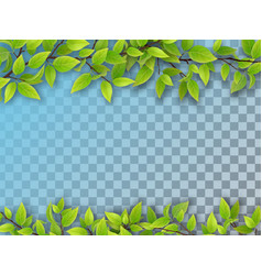 set of tree branches with green leaves vector image vector image