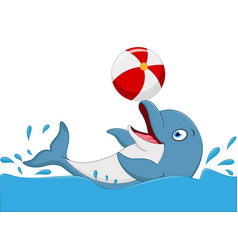 Happy dolphin cartoon playing ball vector