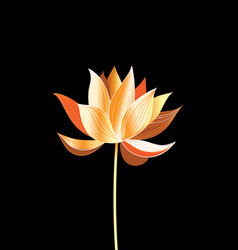A beautiful golden lotus vector