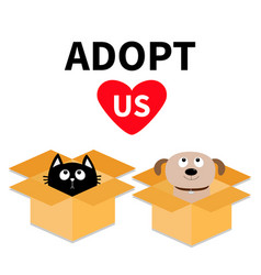 Adopt us dont buy dog cat inside opened cardboard vector
