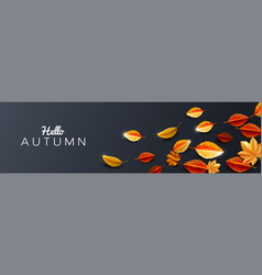 Autumn season background decorate with leaves vector