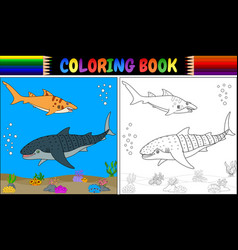 coloring book two cartoon shark vector image