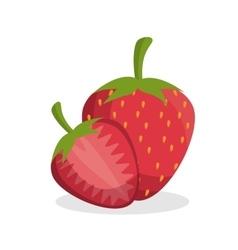 Delicious strawberry fresh fruit vector