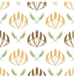 ears of wheat and grains seamless pattern vector image
