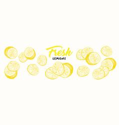 Fresh lemons sketch vector