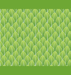 green leaves pattern seamless background for vector image