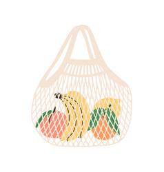 Mesh or net bag full fruits isolated on white vector