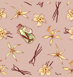 natural vanilla spice seamless pattern vector image