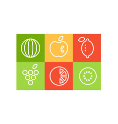 set of different fruits in linear style vector image