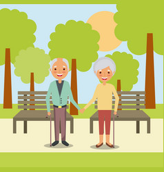 couple the elderly man and woman holding hands in vector image