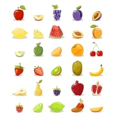 fruits and slices collection vector image