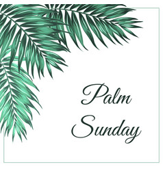 palm sunday corner frame decoration tropical green vector image vector image