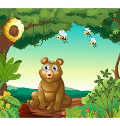 A bear and the three bees in the forest vector image