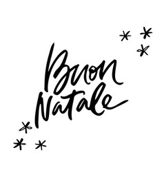 buon natale christmas lettering vector image