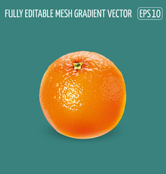 Fresh unpeeled orange on a green background vector