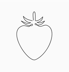 strawberry - one line drawing continuous line vector image