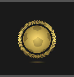 football soccer ball vector image