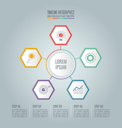 timeline infographic concept with 5 options vector image